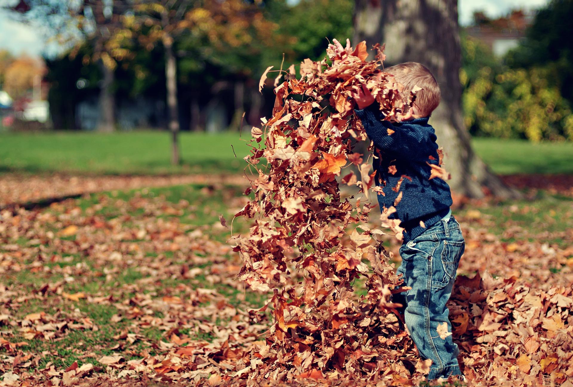 Uteleksaker till hösten